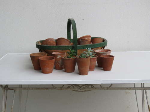 Small English Garden Pots